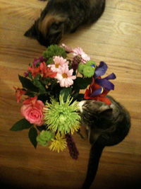 IMG_1323 M flowers web